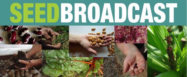 Seed Broadcast